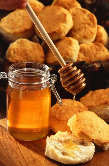 honey-and-biscuits-359x544