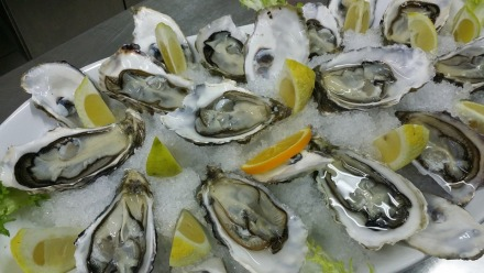 oysters-608905_960_720